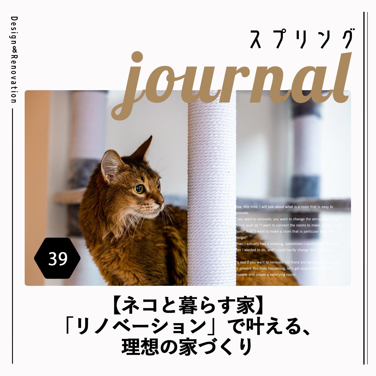 【ネコと暮らす家】「リノベーション」で叶える、理想の家づくり